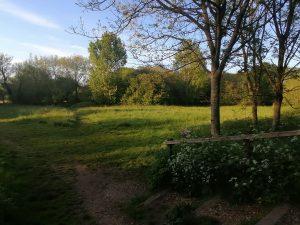 Brook Meadow Emsworth Hampshire
